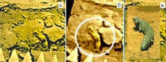 а) Амисада, взбирающаяся на камень. б) Совмещение шести исходных фрагментов панорам...