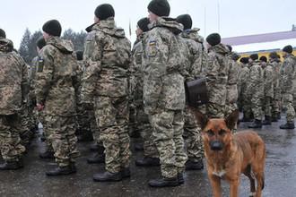 «Кражи оружия»: из Донбасса выведут бригаду десантников