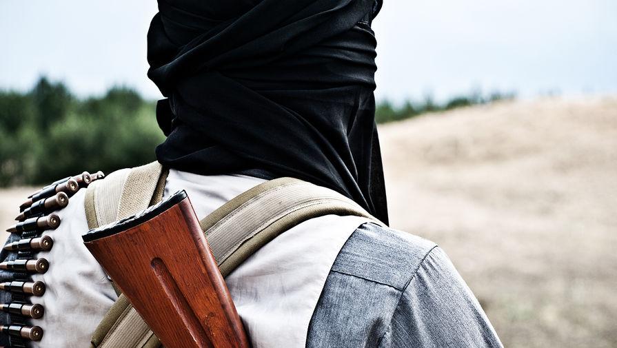 В Талибан заявили, что контролируют около 90% границ Афганистана