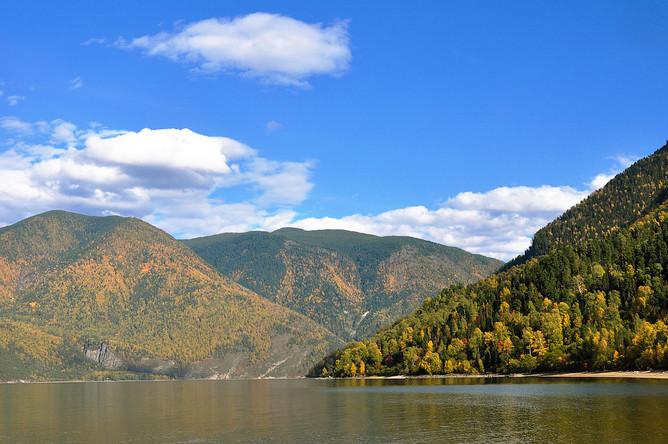Больше всего защитных лесов в Сибири – на склонах вершин Алтая, Саян и других горных массивов. Немного меньше — в горах Кавказа, по Уральскому хребту и на Дальнем Востоке – горной системе Сихотэ-Алинь.