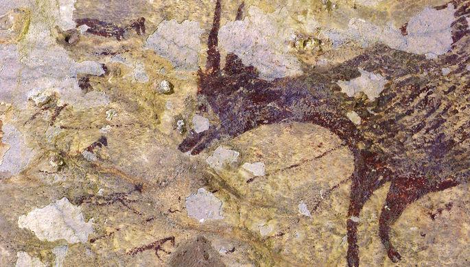 Люди с клювами: найдена древнейшая наскальная картина