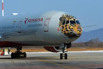 Самолет авиакомпании «Россия» с изображением на носовой части дальневосточного леопарда в аэропорту Владивостока
