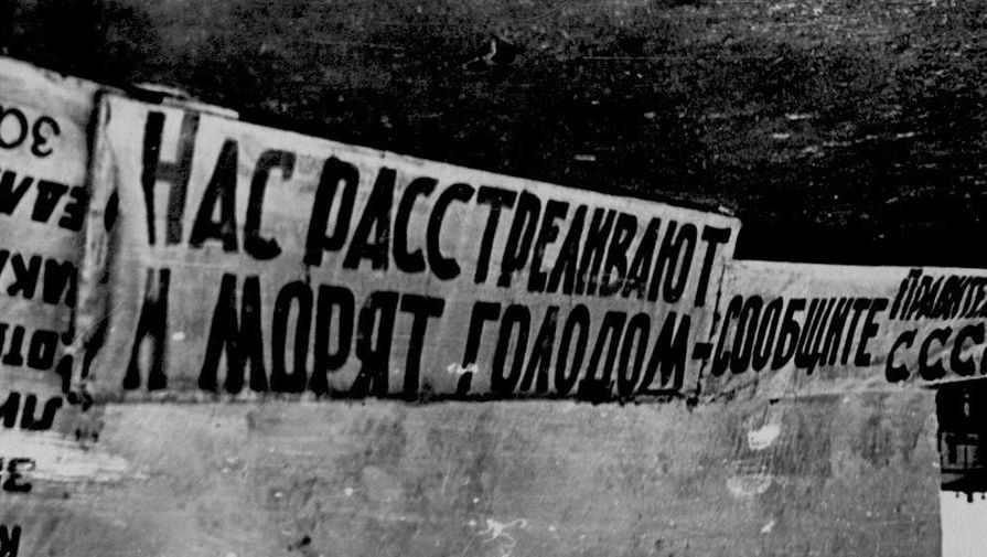 https://img.gazeta.ru/files3/897/11764897/upload-11-pic905-895x505-81708.jpg