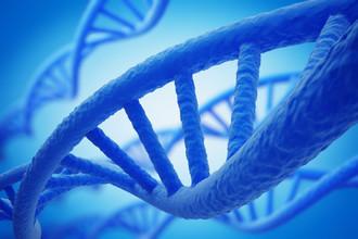 ДНК поможет людям сохранять огромные массивы информации