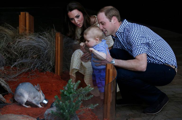 В апреле 2014 года супруги впервые отправились в королевский тур вместе с маленьким Джорджем – их восьмимесячный сын стал главным героем фотографий из поездки в Австралию и Новую Зеландию