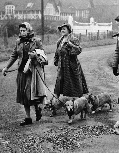 Любовь Елизаветы II к собакам породы корги сейчас общеизвестна. Она влюбилась в этих животных еще в 1933 — корги по имени Дуки был у ее отца. Собственную собаку по имени Сьюзан она получила в подарок на 18-летие в 1944-м — и с тех пор у нее сменялись поколения потомков той самой корги. Недавно после смерти последних корги Елизавете II вновь подарили щенков — правда, они уже не связаны со Сьюзан родственными узами. Теперь у нее есть Фергюс и Мик. На фото Елизавета II с матерью во время прогулки с корги в 1956 году.