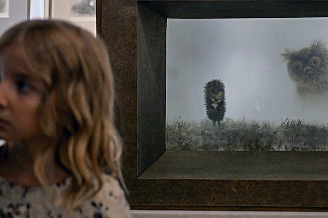 Выставка «Художник рисует фильм. Ярбусова и Норштейн» (2016 год)