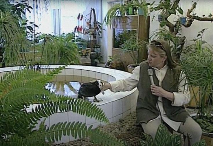 Александра Ливанская в программе «В Городе N...» про Когалым, 1995 год