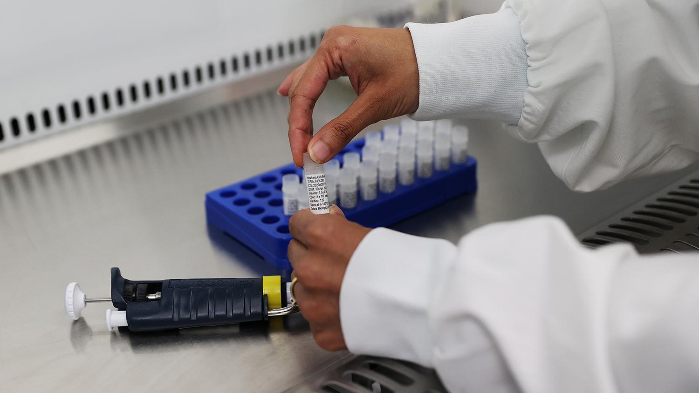 Итальянские ученые заявили о создании первой в мире вакцины от COVID-19 -  Газета.Ru