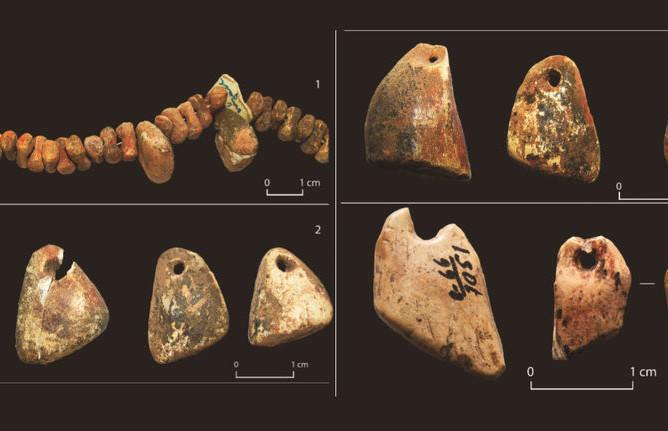 Украшения из кости, найденные в погребении детей (1-3) и в культурном слое (4)