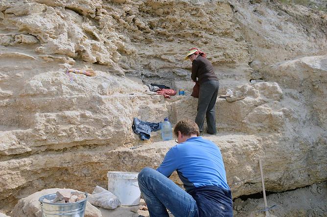 Археологи на раскопах