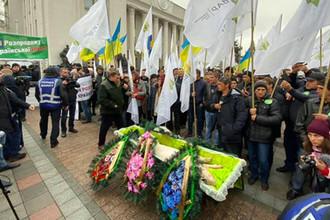 Свинья в гробу у здания Верховной рады Украины, 13 ноября 2019 года