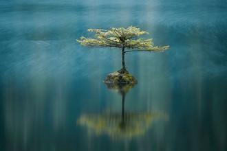 Озеро Fairy, Остров Ванкувер, Британская Колумбия, Канада