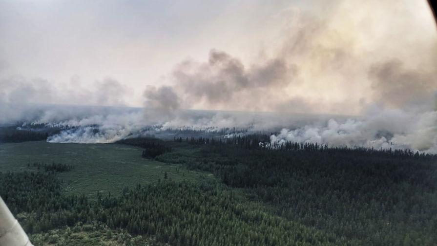 Генпрокуратура выявила искажение данных по лесных пожарам