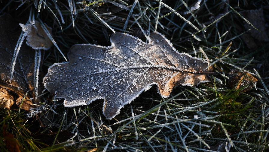 В Гидрометцентре рассказали о заморозках на юге страны