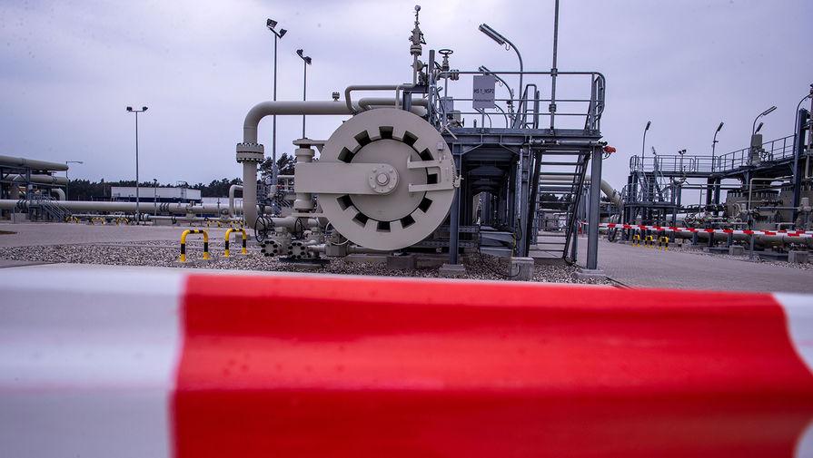 Немецкие экологи рассказали детали об иске против Северного потока  2