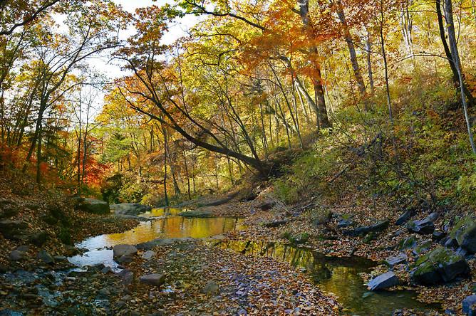 Водоохранные зоны выделяются вокруг каждого ручья, речки, озера, водохранилища и вдоль побережья моря. В них вводится специальный режим хозяйственной деятельности, обеспечивающий их сохранение. Ширина этой зоны может быть от 50 до 500 метров – чем крупнее река или озеро, тем шире водоохранная зона.