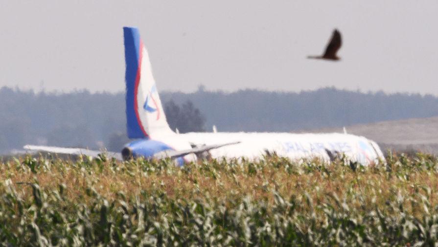 Штрафы за свалки вблизи аэропортов могут вырасти до 1,5 млн руб