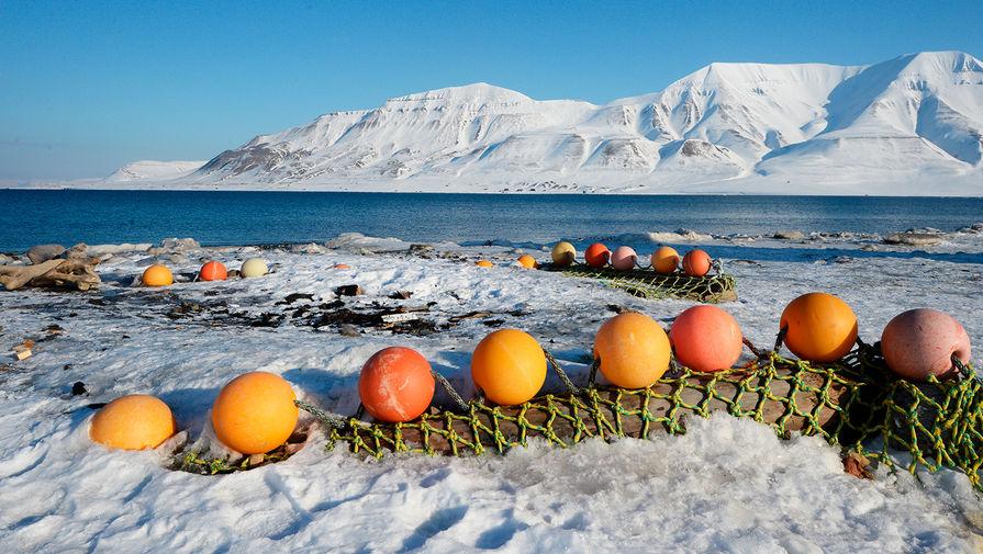 Таяние мерзлоты: уйдет ли сельское хозяйство на Север