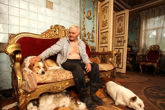 Главный санитарный врач Москвы распорядился ввести регистрацию домашних животных