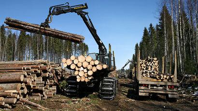Канадские компании могут вытеснить российскую древесину с рынка КНР