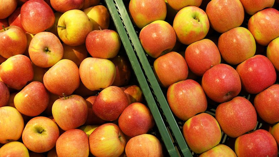 Почему Россельхознадзор запретил ввозить турецкие яблоки через Белоруссию