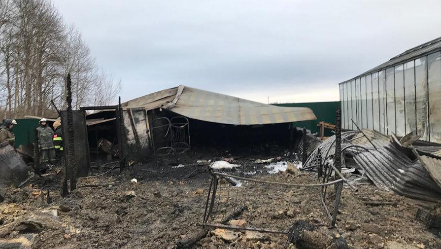 Последствия пожара на территории тепличного комплекса в деревне Нестерово в Московской области, 7 января 2020 года