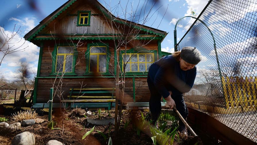 Около 30% россиян мечтают о даче