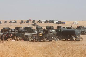 Военные автомобили иракских сил безопасности, подготовка к операции, 15 октября 2016 года
