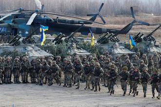 Военнослужащие Десантно-штурмовых войск Украины во время учений в Житомирской области, 21 ноября 2018 года