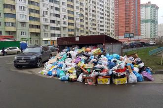 Красногорские коммунальщики прекратили вывоз мусора из-за долгов