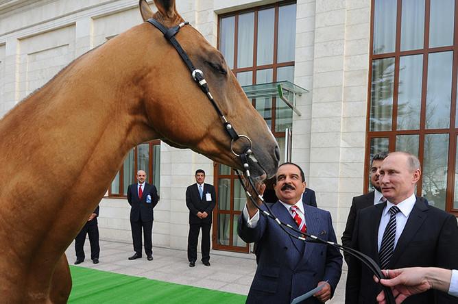 Король Бахрейна Хамад II бен Иса аль-Халиф (слева на втором плане) и президент России Владимир Путин во время передачи жеребца ахалтекинской породы по кличке Хаджибек королю Бахрейна на территории резиденции «Бочаров Ручей»