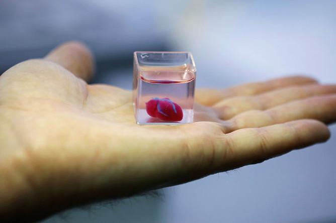 Сердце, напечатанное на 3D-принтере, 15 апреля 2019 года