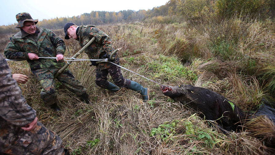 В РПЦ предложили серьезно ограничить охоту
