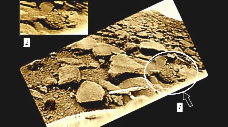 Объект с условным названием «сыч» (1) на обработанной панораме «Венеры-9»...