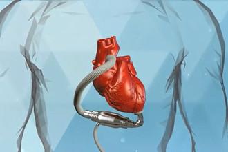 Сердца дождутся со «Спутником»