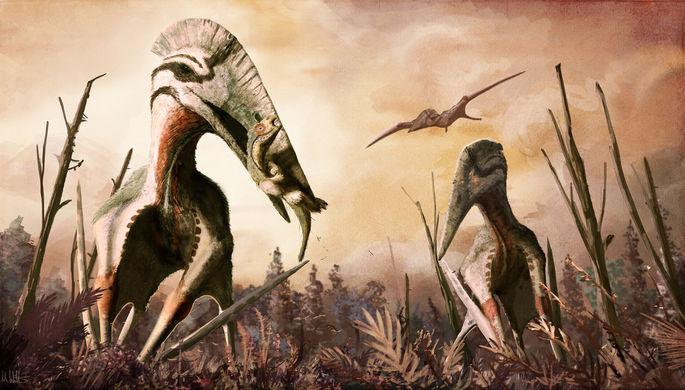 Длинней, чем у жирафа: палеонтологи раскрыли секрет шеи птерозавров
