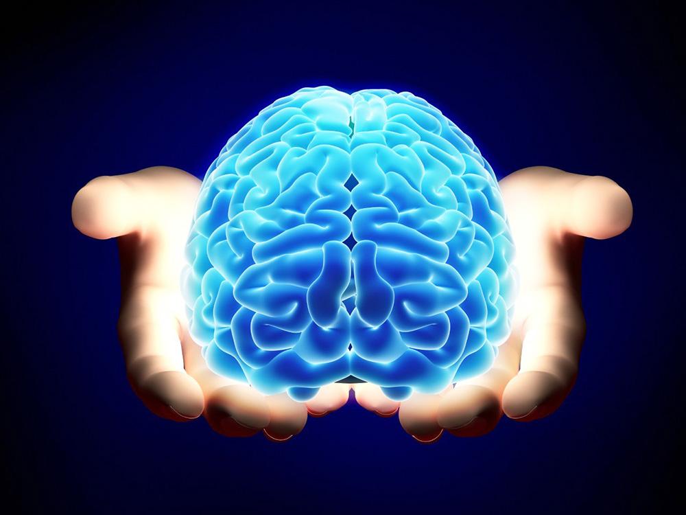 Ученые нашли область мозга, где прячется человеческое сознание - Газета.Ru