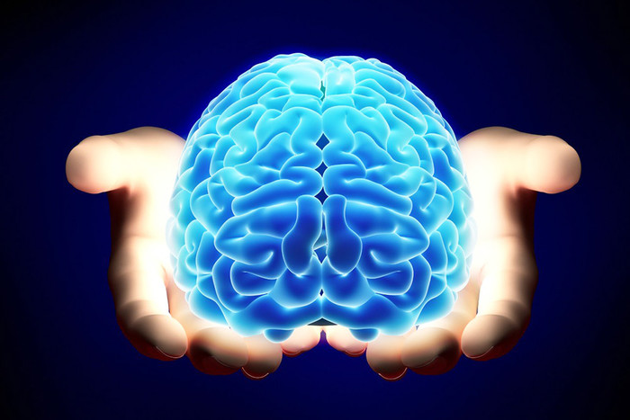 ученый к бернар о удалении части мозга