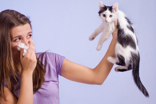 как жить с аллергией хронической отзывы