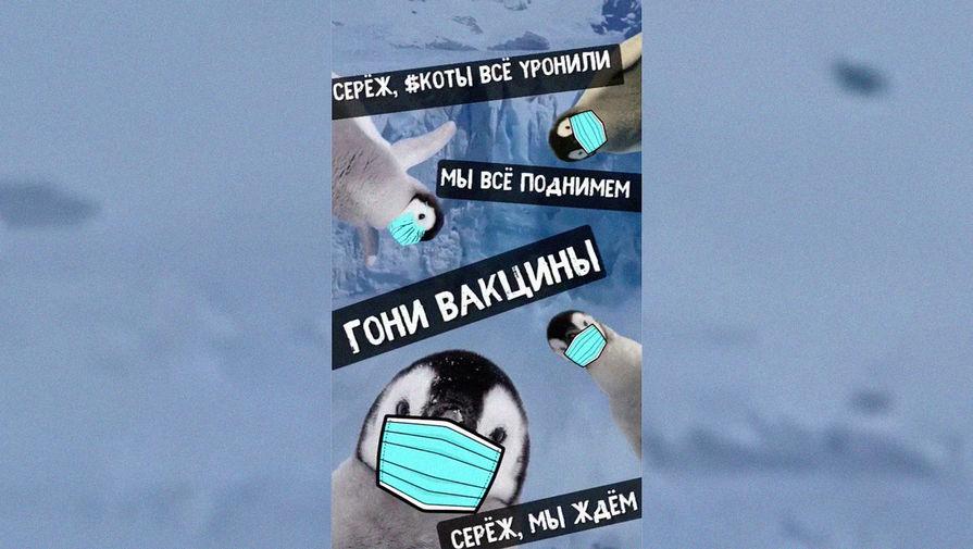 МИД России опубликовал пародию на мем с котами и Наташей к 1 апреля