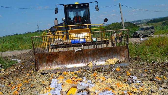 Уничтожение импортного сыра на полигоне в Белгородской области, 2015 год