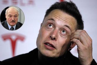 «Эм, нет»: Маск не дарил машину Tesla Лукашенко
