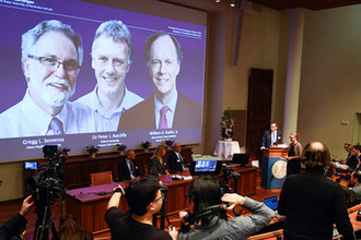Объявление лауреатов Нобелевской премии по медицине и физиологии в Стокгольме, 7 октября 2019 года
