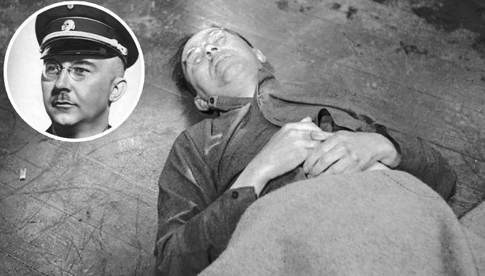 Генрих Гиммлер после смерти, 23 мая 1945 года