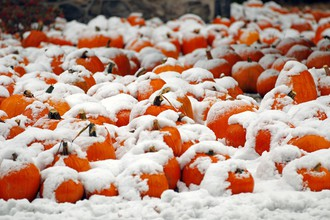 Снегопады в конце октября – вообще редкое явление для восточного побережья страны