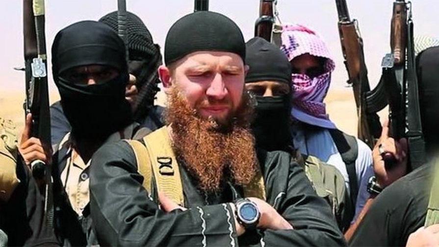 Соколов митрич гей джихад